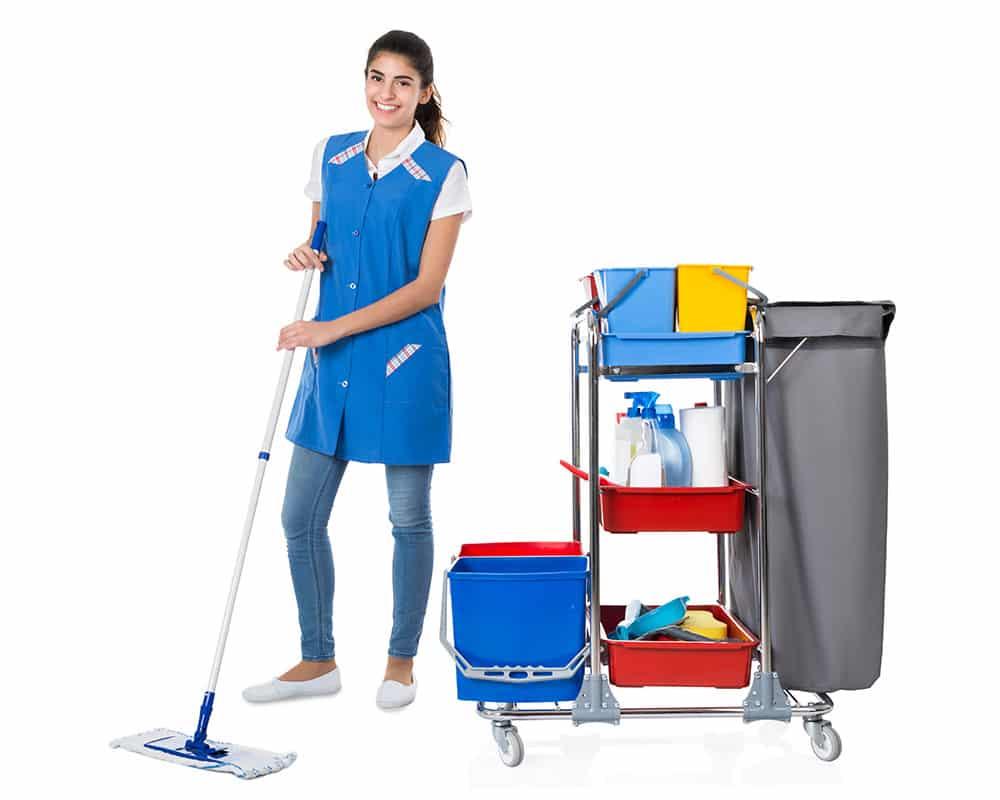 OZAP Cleaning Sydney